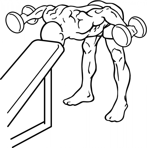 Bent-Over Dumbbell Rear Delt Raise Wtih Head On Bench