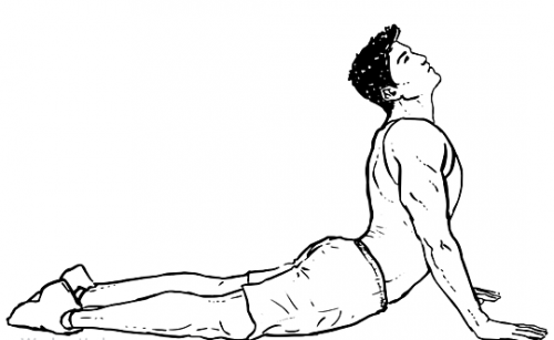 Cobra Abdominal Stretch