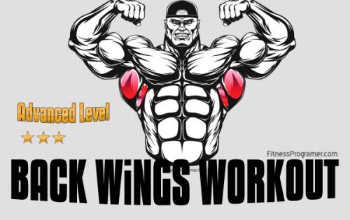 Ultimate Back Workout