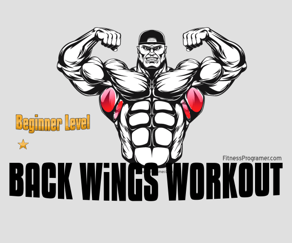 Back Workout For Beginners