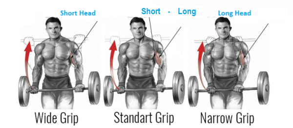 barbell curl grip