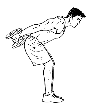 Bent Over Triceps Kick back