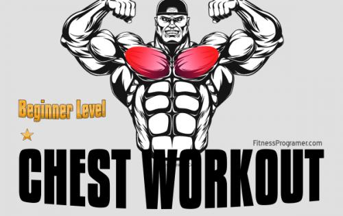 Chest Workout Beginner