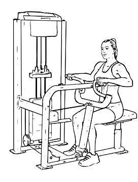 Seated Machine Back Row