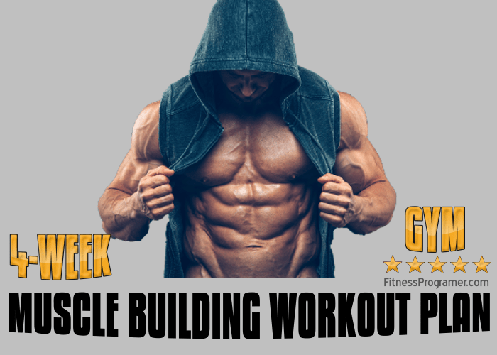 muscle building workout plan