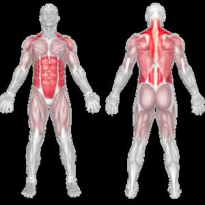 posture workout