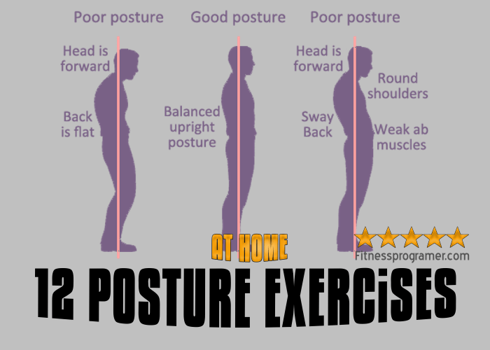 The Best 12 Posture Exercises
