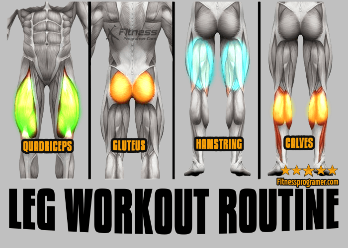 Intermediate Leg Workout for Building Muscle